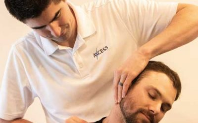 Adjustment or Acupuncture Session